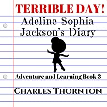 Terrible Day! Adeline Sophia Jackson's Diary: Adventure and Learning, Book 3 Audiobook by Charles Thornton Narrated by Stephanie Quinn