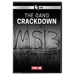 FRONTLINE: The Gang Crackdown DVD