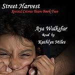 Street Harvest   Aya Walksfar
