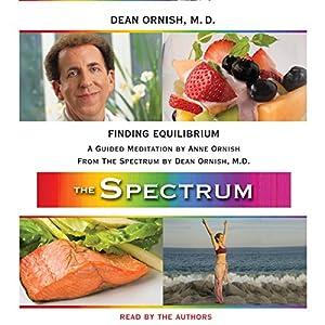 Finding Equilibrium Audiobook