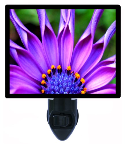 Floral / Flower Night Light - Pick of the Bunch