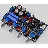 Generic YJ Dual AC12V-0-12V Luxury NE5532 Senior Fever Sound Palette Board Pre-amplifier Board For HI-FI Amplifier
