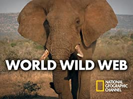 World Wild Web Season 1