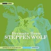 Steppenwolf | [Hermann Hesse]