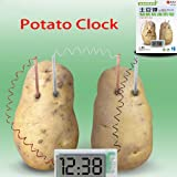 Green Science Potato Clock for Experiment Kit kids Lab Home School Toy