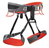 Black Diamond Momentum climbing belt grey/red (Size: M) climbing belt