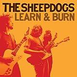Learn & Burn [Vinyl]