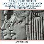 Afro Hair of the Ancient Egyptians and Blackheads, Africans of Mesopotamia | Anu M'Bantu