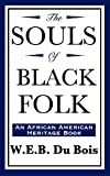 Image of The Souls of Black Folk