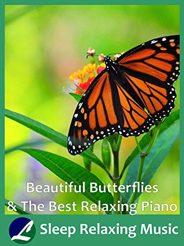 Beautiful Butterflies & The Best Relaxing Piano