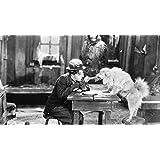Posterhouzz Movie The Gold Rush Charlie Chaplin HD Wallpaper Background Fine Art Paper Print Poster