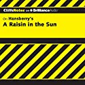 A Raisin in the Sun: CliffsNotes (       UNABRIDGED) by Rosetta James, B.A. Narrated by Kate Rudd