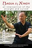 img - for Bagua and Xingyi: An Intersection of the Straight and Curved book / textbook / text book