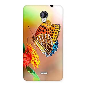 Queen Butterfly Back Case Cover for Micromax Unite 2 A106