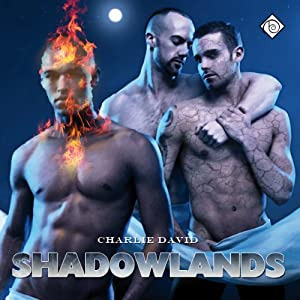 Shadowlands Audiobook
