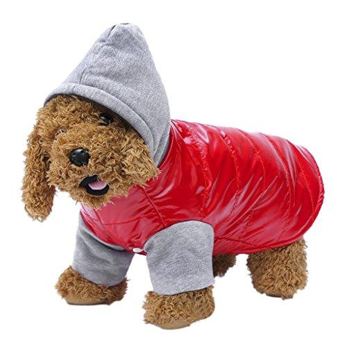 winter-small-dog-hooded-jacket-fleece-lined-fashionable-warm-coat-pet-cat-sweatshirt-outfit-outwear-