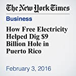 How Free Electricity Helped Dig $9 Billion Hole in Puerto Rico | Mary Williams Walsh