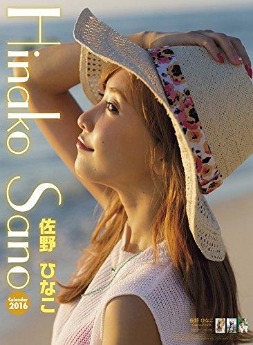 佐野ひなこ 2016年 カレンダー 壁掛け B2