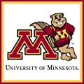 Turner CLC Minnesota Golden Gophers Note Cube (8080108)