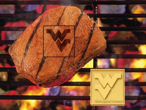 Fanmats Ncaa West Virginia University Mountaineers Metal-Alloy Fanbrand