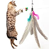 5 Pack Super Guinea Fowl Feather Refill Replacement For The Original Bird Catcher Go Cat or Da Bird! Best Interactive Cat Toy Fun Dancer Dangler Chaser Charmer Wand Fishing Pole Teaser Indoor Kittens Young Older Cats To Run Play Chase! Good Feline Exercis