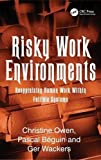 img - for Risky Work Environments: Reappraising Human Work Within Fallible Systems book / textbook / text book