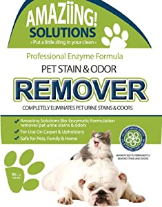 Pet Stain Remover & Cat Urine Odor Remover - GUARANTEED to Permanently Remove and Neutralize Urine Stains and Odors from Carpet, Upholstery and Other Surfaces - Maximum Strength Urine Enzyme Cleaner - Stronger Than Natures Miracle Urine Eliminator - Best Urine Odor Remover - Dog Urine Remover and Cat Urine Cleaner - Urine Odor Eliminator Pets Supplies - Best Carpet Stain Remover for Home and Car - Urine Gone Permanently - Urine Odor Neutralizer - Leaves Zero Odor and Gets Urine Off and Stink Free - Perfect Pet Stain and Odor Remover for Small Animal Cages - LIFETIME SATISFACTION MONEY BACK GUARANTEE - 32oz (946ml) Spray Bottle