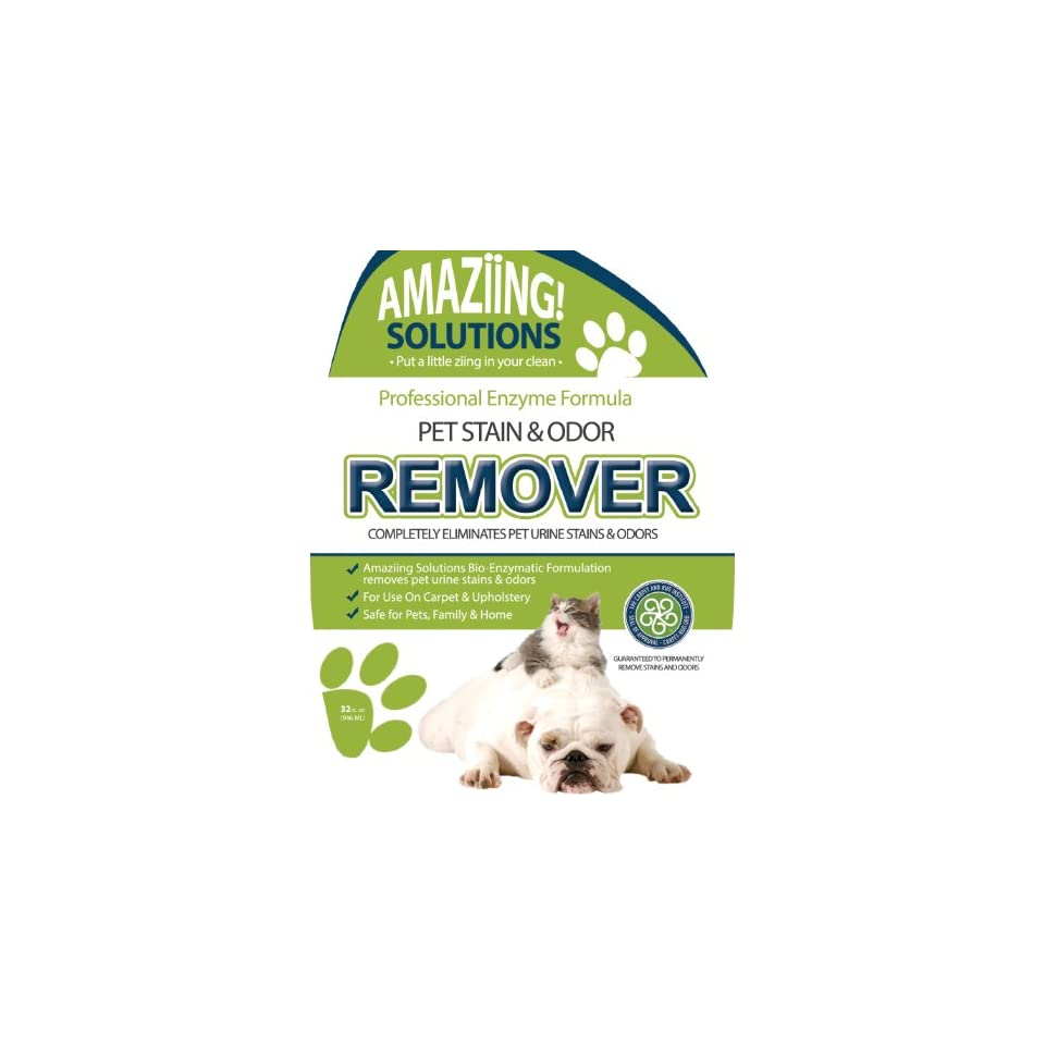 Best Pet Stain Remover and Odor Eliminator Carpet Cleaner for Dog Urine and Cat Pee,