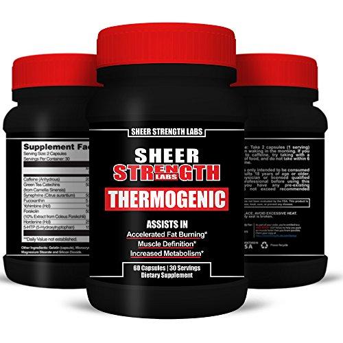 Bodybuilding Supply Store