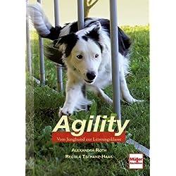Agility. Vom Junghund zur Leistungsklasse