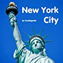 Audio Guide New York City (       UNABRIDGED) by Andi Arndt Narrated by Andi Arndt