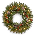 National Tree FRB-24WLO-1 Frosted Berry Wreath with 50 Clear UL-Lights, 24-Inch