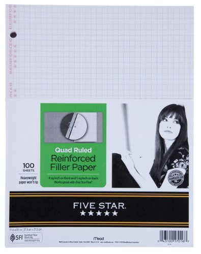 Five Star  Reinforced Filler Quad Paper 100 ct (17016)
