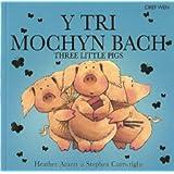 Tri Mochyn Bach, Y / Three Little Pigs