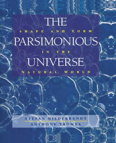 The Parsimonious Universe: Shape and Form in the Natural World
