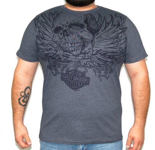 Harley-Davidson Mens Chain Link Skull Charcoal Short Sleeve T-Shirt (Large)