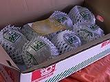 フルーツyamakiti 高知産 新高梨 4キロ箱 5~7玉 ランキングお取り寄せ