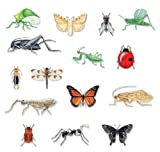 Insects Bulletin Board Set (074240434X) by School Specialty Publishing
