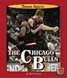 The Chicago Bulls (Team Spirit (Norwood))