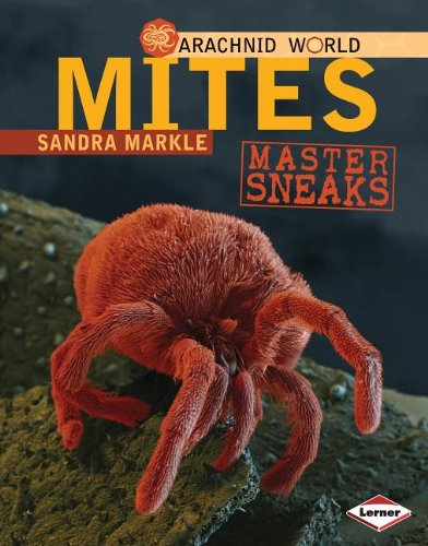 Mites: Master Sneaks (Arachnid World)