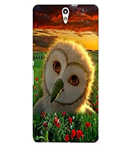 ColourCraft Owl Design Back Case Cover for SONY XPERIA C5 ULTRA DUAL