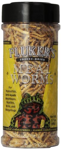 Flukers Freeze Dried Mealworms Pet Food 1 7 Ounce