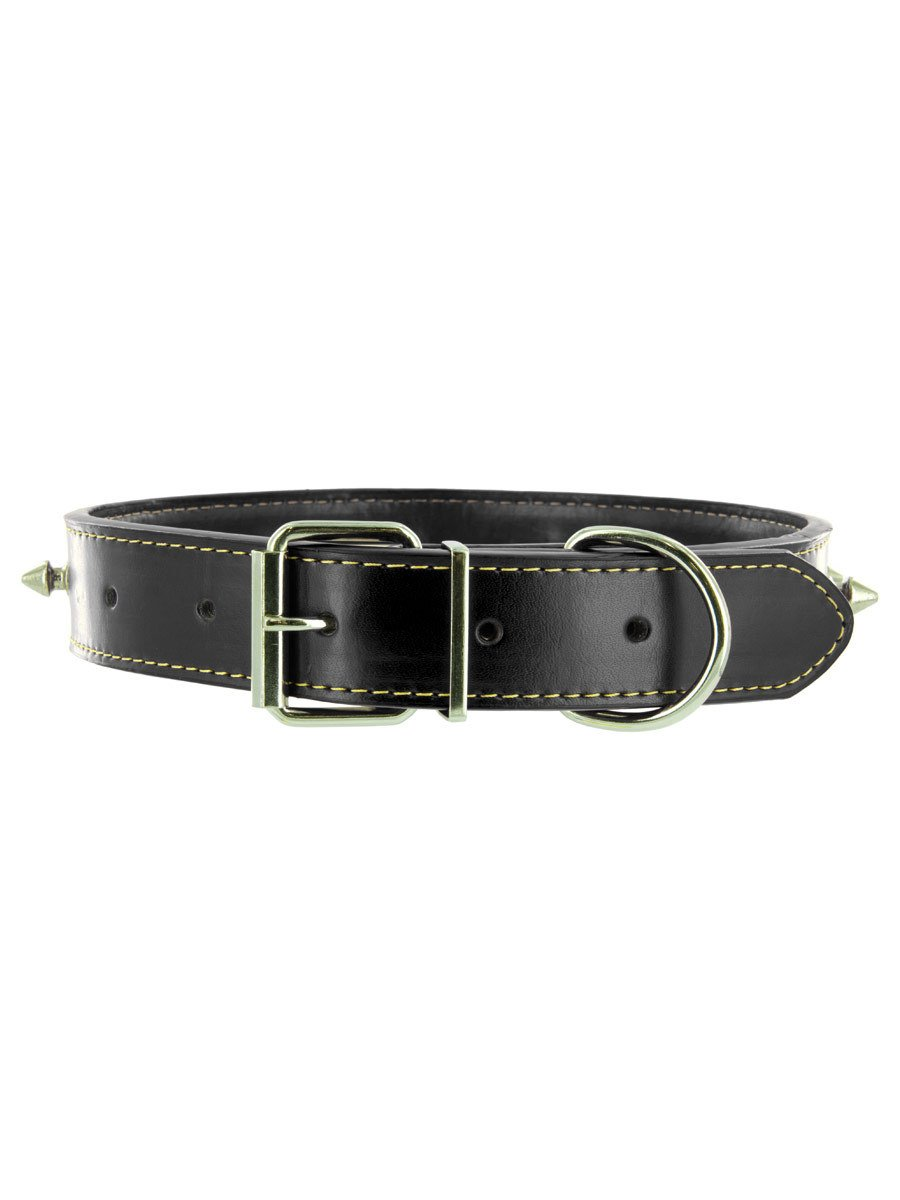 top leather dog collars