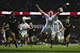 Rugby photo - Chris Ashton Swallow Dive Try v New Zealand 2012 - Medium - Print Only