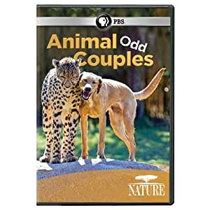 Nature: Animal Odd Couples