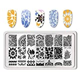 Summer Fruit Nail Art Stamping Template Tropical Punch Pattern Rectangle Image Plate Stamping Polish Needed BP-L008 (Color: BP-L008)