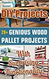 DIY Projects: 20+ Genious Wood Pallet Projects With Surprising Functionality!: (Wood Pallet, DIY projects, DIY household hacks, DIY projects for your home and everyday life, Recycle)