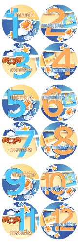 SUMMERTIME BEACH CRABS Baby Month By Month Stickers - Baby Month Onesie Stickers Baby Shower Gift Photo Shower Stickers