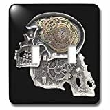 3dRose lsp_102675_2 Steampunk Gothic Faux Metal Skull Image Double Toggle Switch