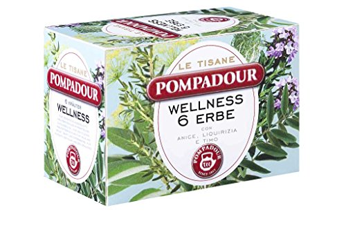 pompadour-infusione-per-bevande-calde-tisana-wellness-6-erbe-15-astuccio